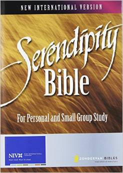 The Serendipity Bible
